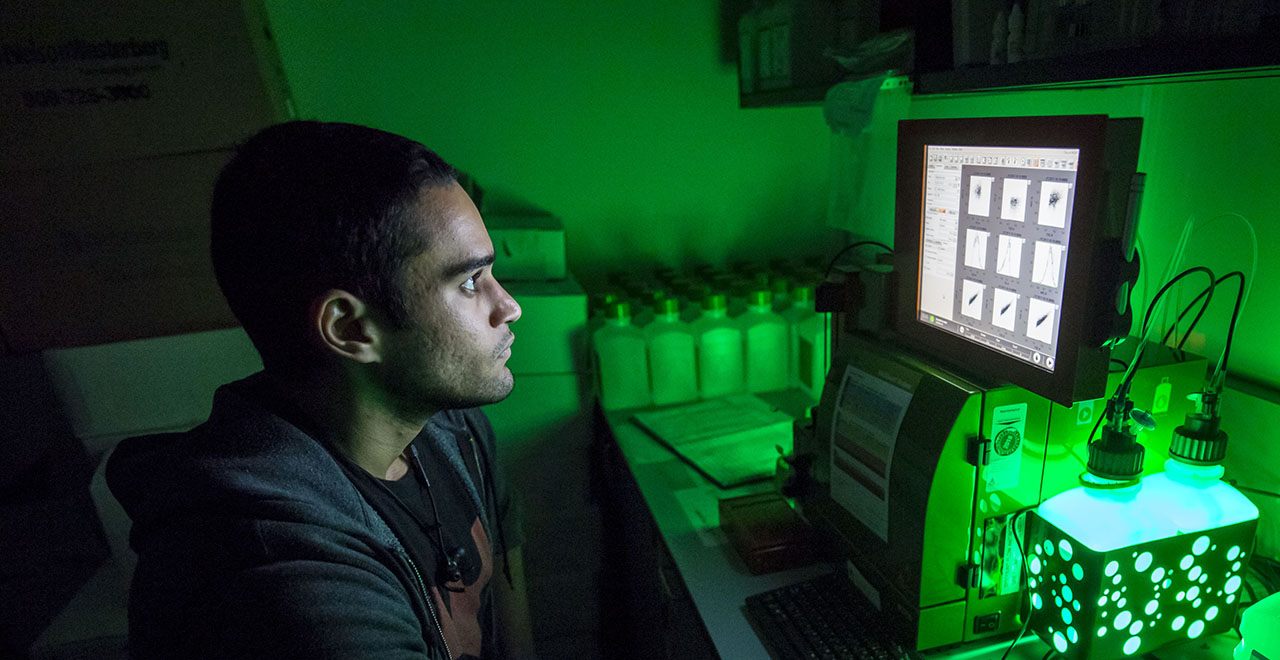Seton Hall's Chemistry Department Focuses on Green Initiatives for Chemical Processes