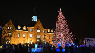 Photo of Seton Hall Christmas Tree