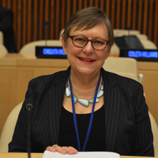 Catherine Tinker, Adjunct Professor and Fellow, Center for UN and Global Governance Studies
