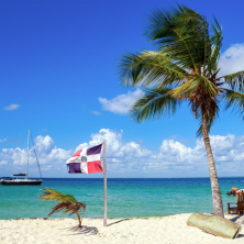 Dominican Republic flag on a beach next to a palm tree.